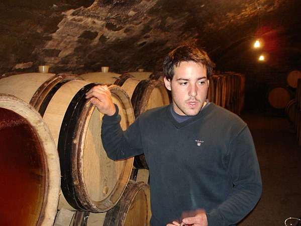 vin bourgogne rapport qualite prix
