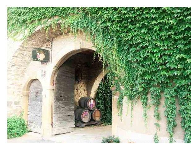 Vignerons Beaujolais Desvignes Morgon
