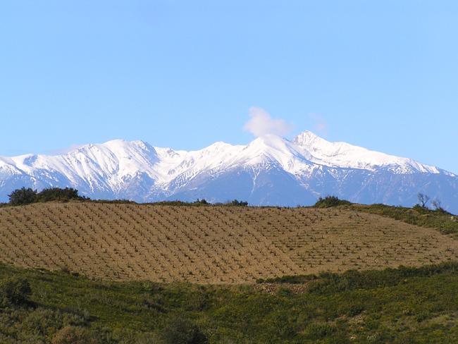 Domaine Gerard Gauby, Grands Vins du Roussillon