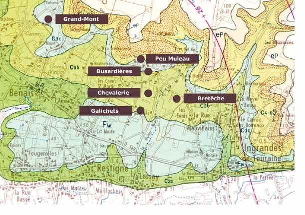 Bourgueil domaine chevalerie