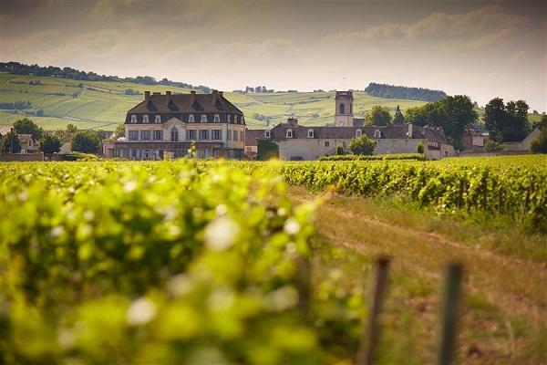 chateau Pommard grands vins