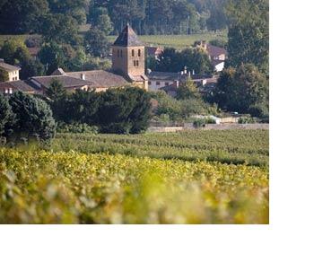 vins macon vinzelles