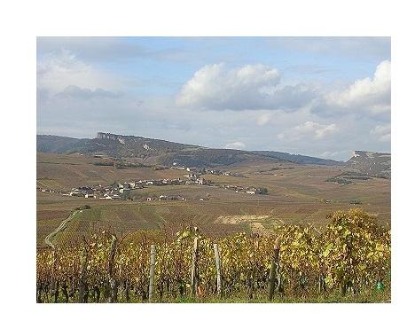 pouilly blancs vins premiers crus
