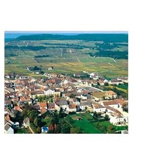 Puligny vins vignoble grands crus Chevalier Montrachet
