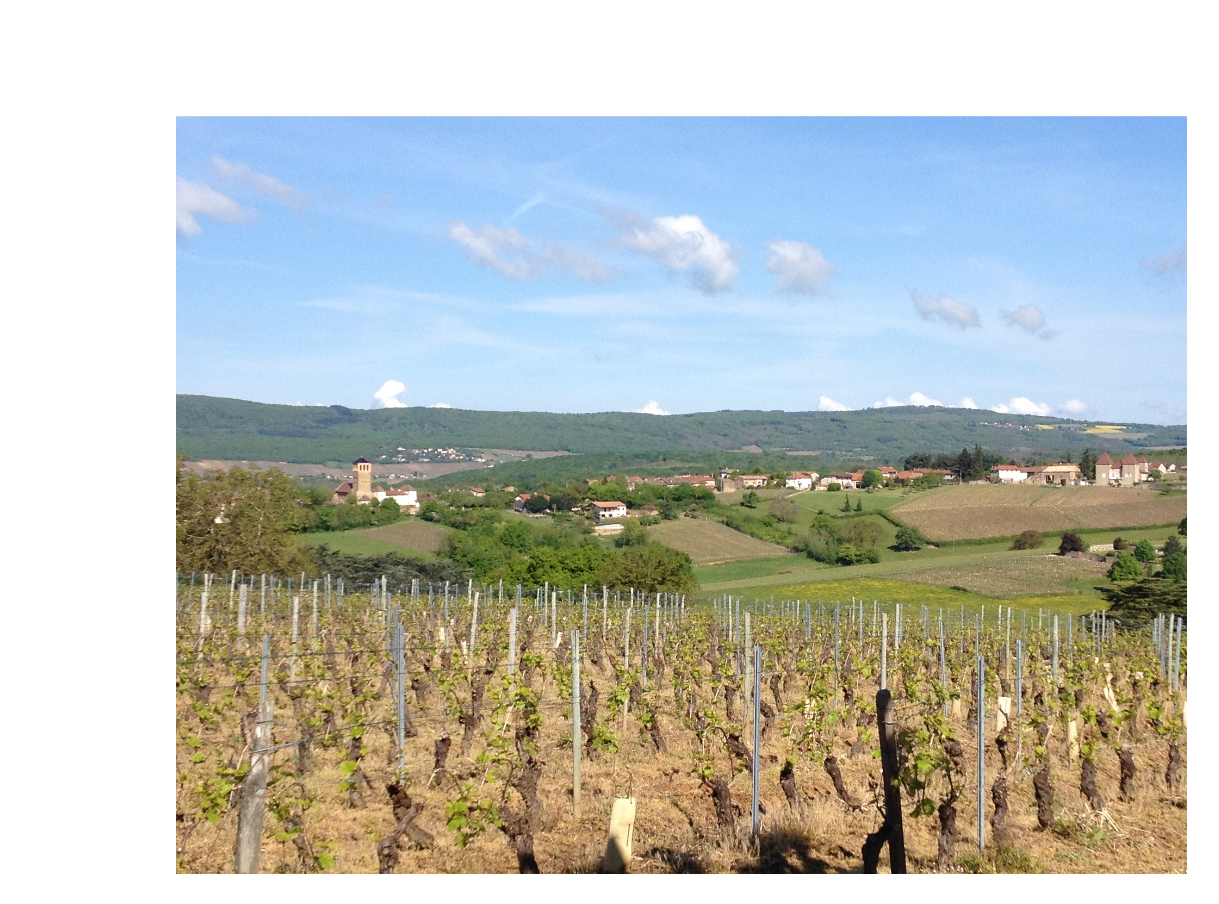 mortie vire clesse macon bourgogne