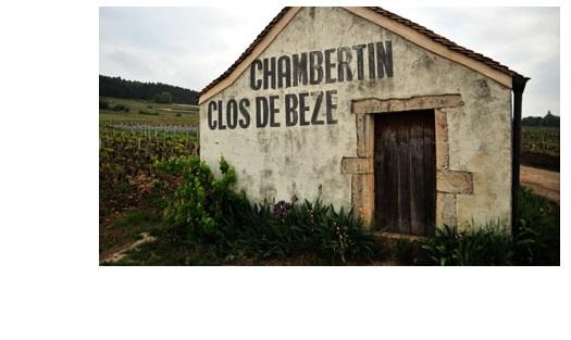 Clos beze grand cru vin gevrey