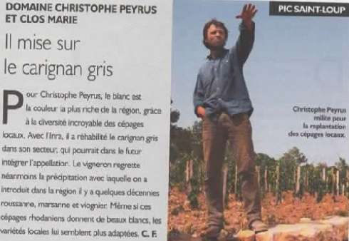 peyrus-languedoc-article-rvf-avril-2019