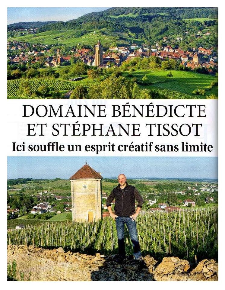 Domaine Stephane Tissot Revue des VIns de France