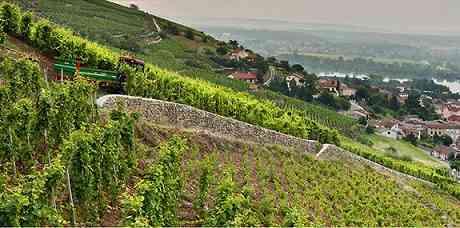 pierre-jean-villa-vignes-rhone-nord