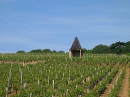 Le Clocheton du climat Les Quarts, AOC Pouilly-Vinzelles du Domaine La Soufrandière